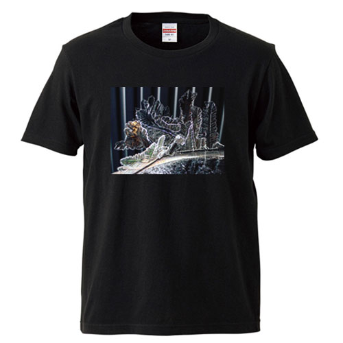 氷のTシャツ